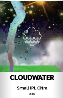 Cloudwater Brew Co. Small IPL 2.9%